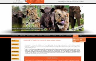 DIRECT'it LOWVELD Online Business Directory Website. Affordable digital advertising in Mpumalanga