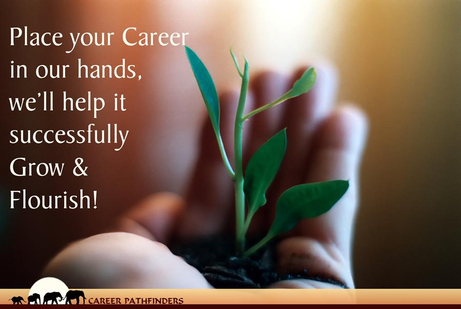 Career Pathfinders Social Media Advert Campaign Design