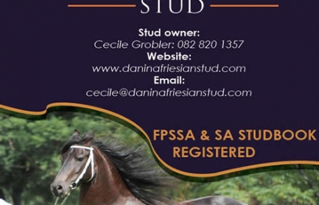 Danina Friesian Stud HQ Magazine Advert Design