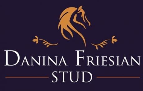 Danina Friesian Stud - Friesian Horses Nelspruit