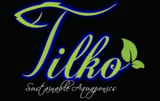 Tilko - Logo Design