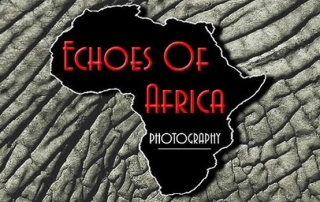 Echoes Of Africa Wildlife Photography